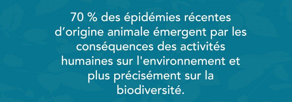 Source : Rapport de l'IPBES  (Plateformes intergouvernementales scientifiques et politiques sur la biodiversité et les services écosystémiques).